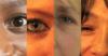 eye con(t)act